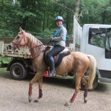 VIVLEVENT L'AIGOUAL (DSA) en valorisation endurance, qualifié 60 kms